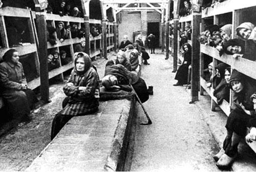 Осмотр женщин в лагерях видео