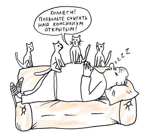 4_kototerapy