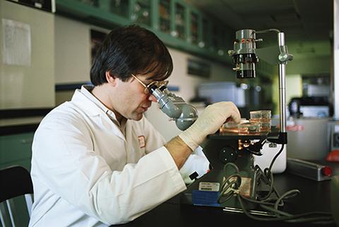 Новое открытие ученых в лечении рака яичника