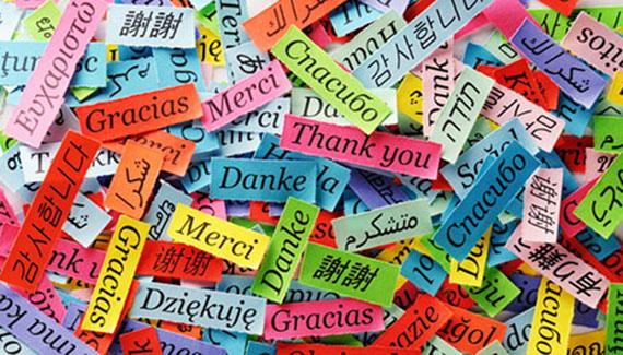 313516-languages-ts
