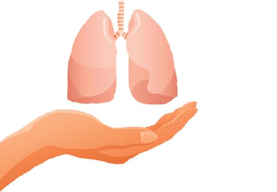 Сколько живут после пересадки легких