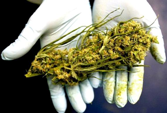 Старики курят марихуану в чем можно растить коноплю