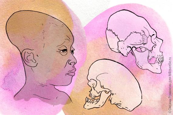Шов между лобной и теменной костями